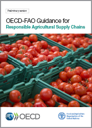 OECD-FAO-Guidance-for-Responsible-Agricultural-Supply-Chains.jpg