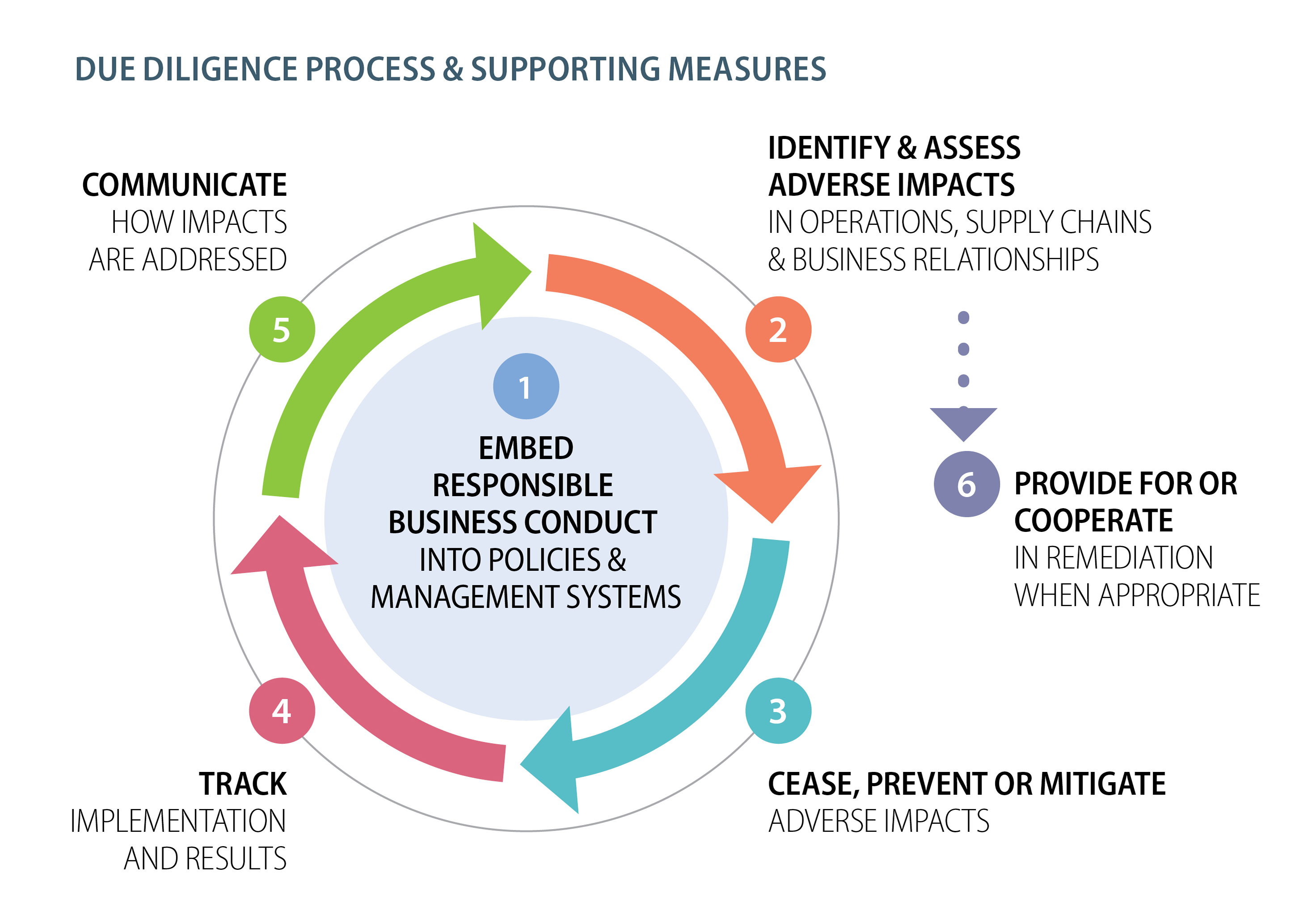 Due diligence process and supporting measures - Scheme 6 steps